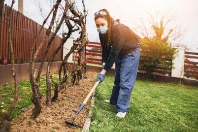 Non-Toxic Gardening During COVID-19