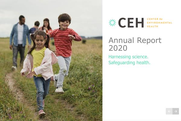 CEH Annual Report